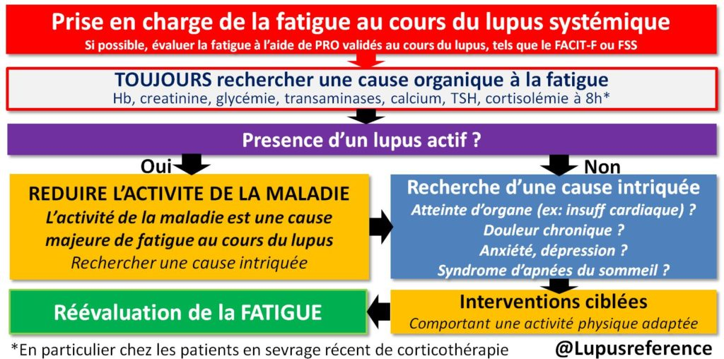 fatigue lupus systémique