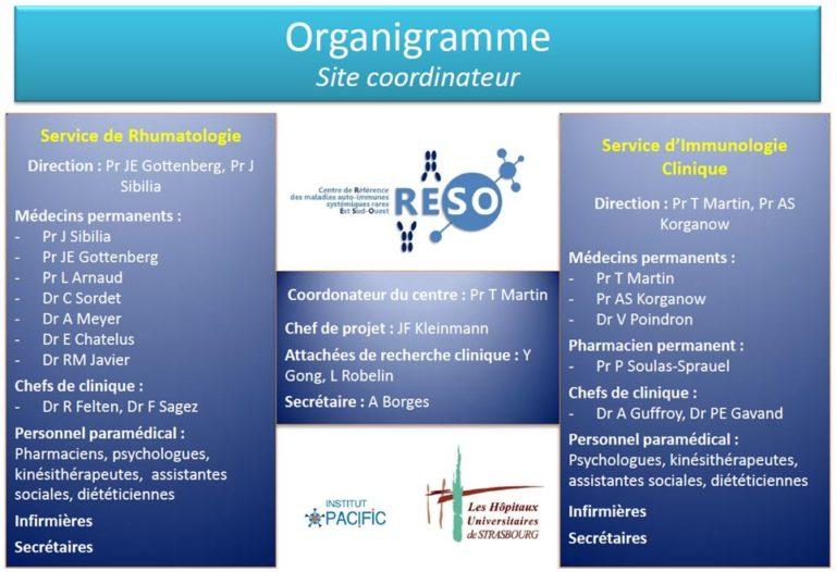 Organigramme du CRMR des maladies auto-immunes RESO de Strasbourg