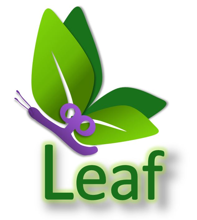 Lupus LEAF fatigue
